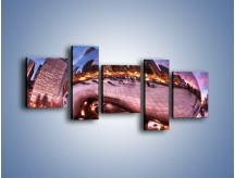 Obraz na płótnie – Cloud Gate w Chicago – pięcioczęściowy AM352W7