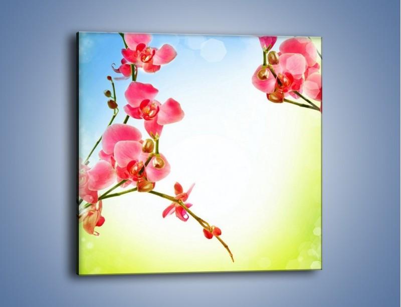 Obraz na płótnie – Akcent kwiatowy – jednoczęściowy kwadratowy K268