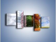 Obraz na płótnie – Cztery pory roku – pięcioczęściowy GR333W7