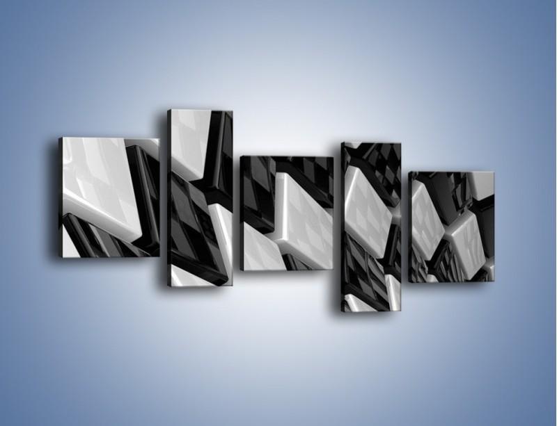 Obraz na płótnie – Czarne czy białe – pięcioczęściowy GR425W7