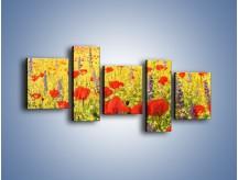 Obraz na płótnie – Cała łąka maków – pięcioczęściowy GR480W7