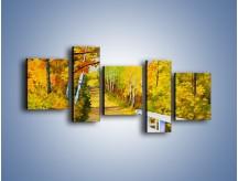 Obraz na płótnie – Alejką w słoneczna jesień – pięcioczęściowy GR540W7