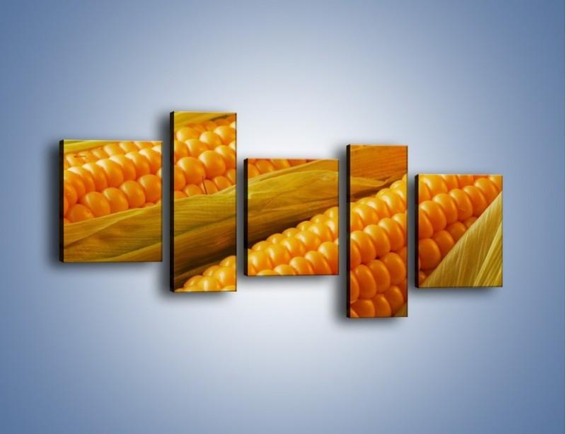 Obraz na płótnie – Kolby dojrzałych kukurydz – pięcioczęściowy JN046W7