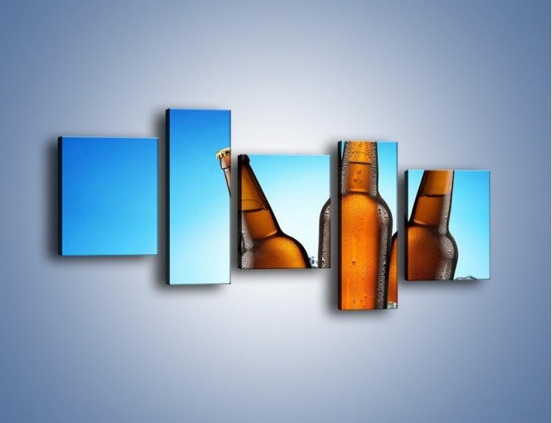 Obraz na płótnie – Szron na butelkach piwa – pięcioczęściowy JN075W7