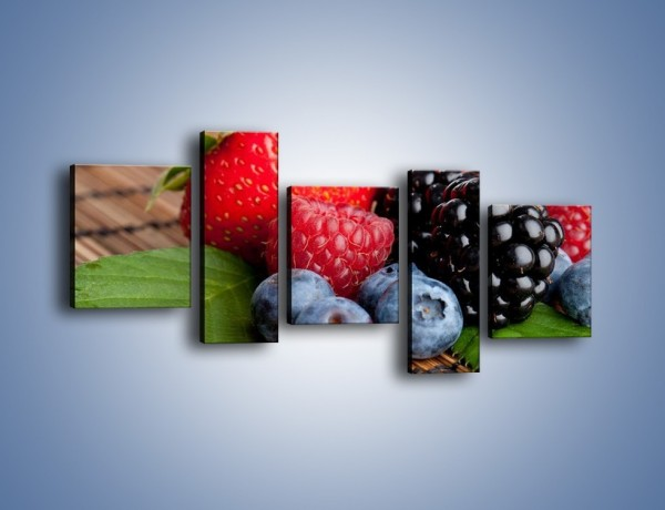 Obraz na płótnie – Dojrzałe owoce leśne – pięcioczęściowy JN111W7