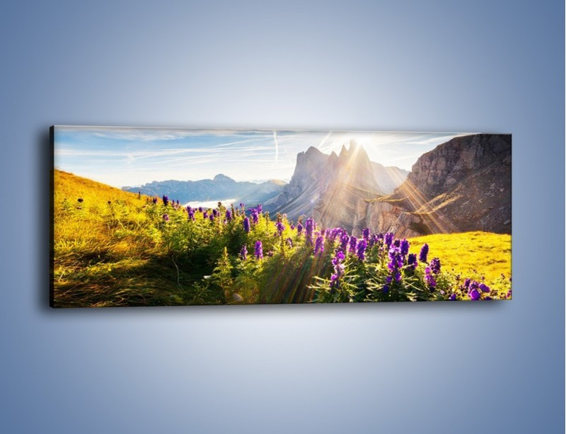 Obraz na płótnie – Góry w poświacie słońca – jednoczęściowy panoramiczny KN502