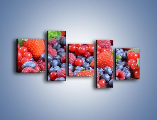 Obraz na płótnie – Owoce z działki – pięcioczęściowy JN422W7