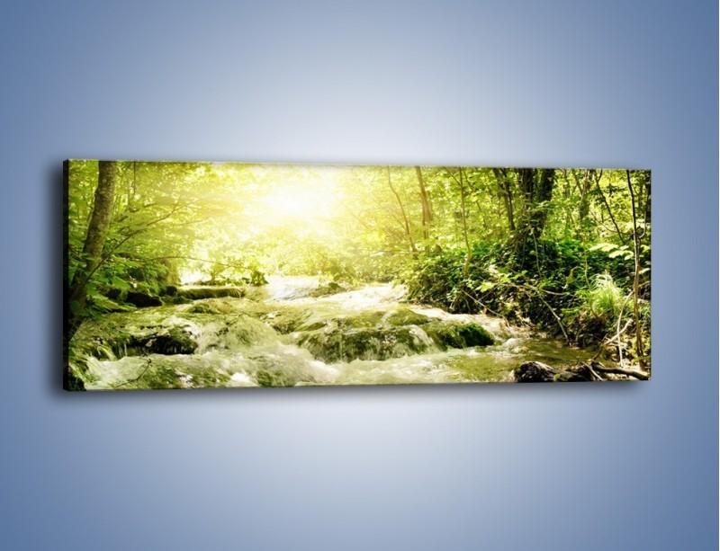 Obraz na płótnie – Wzburzony potok leśny – jednoczęściowy panoramiczny KN508