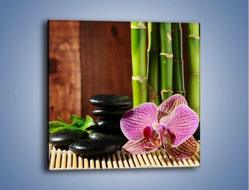 Obraz na płótnie – Bambus storczyk i kamienie – jednoczęściowy kwadratowy K279
