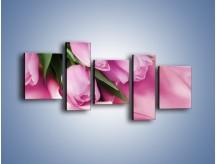 Obraz na płótnie – Atłas wśród tulipanów – pięcioczęściowy K152W7