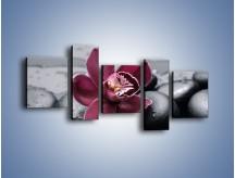 Obraz na płótnie – Bordowy storczyk i ciemne towarzystwo – pięcioczęściowy K156W7