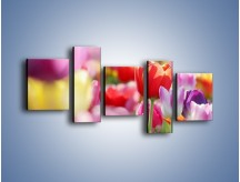 Obraz na płótnie – Boso przez tulipany – pięcioczęściowy K344W7