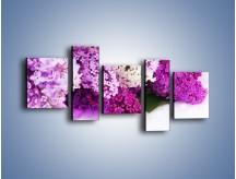 Obraz na płótnie – Bez w różnych kolorach – pięcioczęściowy K389W7