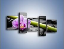 Obraz na płótnie – Bambus czy storczyk – pięcioczęściowy K686W7