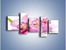 Obraz na płótnie – Biały kwiatowy stół – pięcioczęściowy K688W7