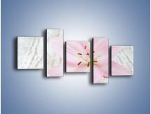 Obraz na płótnie – Cała słodycz w lilii – pięcioczęściowy K727W7