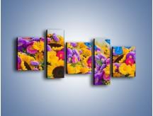 Obraz na płótnie – Bajka o kwiatach i motylach – pięcioczęściowy K794W7