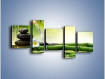 Obraz na płótnie – Bambus i źródło wody – pięcioczęściowy K930W7