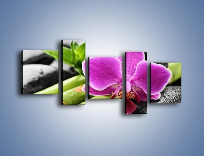 Obraz na płótnie – Idealnie ułożony kwiat – pięcioczęściowy K931W7