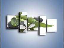 Obraz na płótnie – Artystyczna kompozycja z kwiatem – pięcioczęściowy K968W7