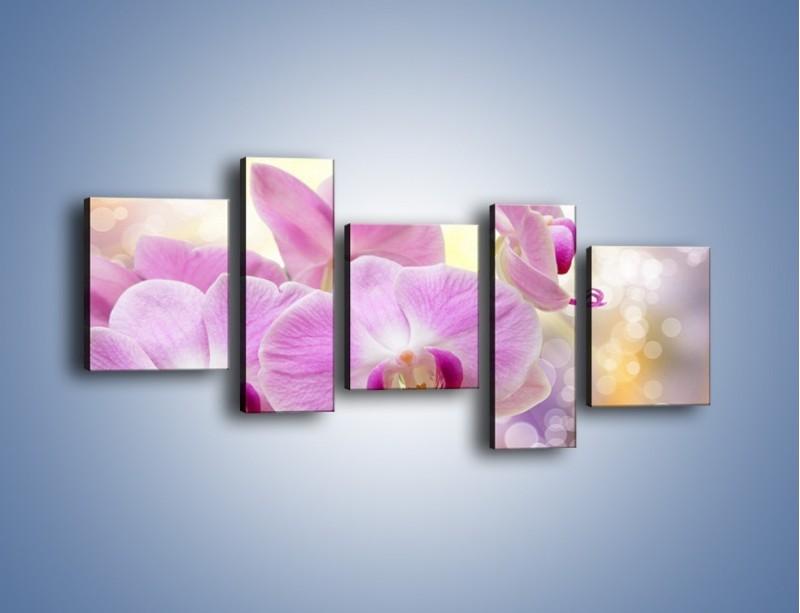 Obraz na płótnie – Lila kwiaty o poranku – pięcioczęściowy K976W7