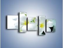 Obraz na płótnie – Białe kwiaty w potoku – pięcioczęściowy K991W7