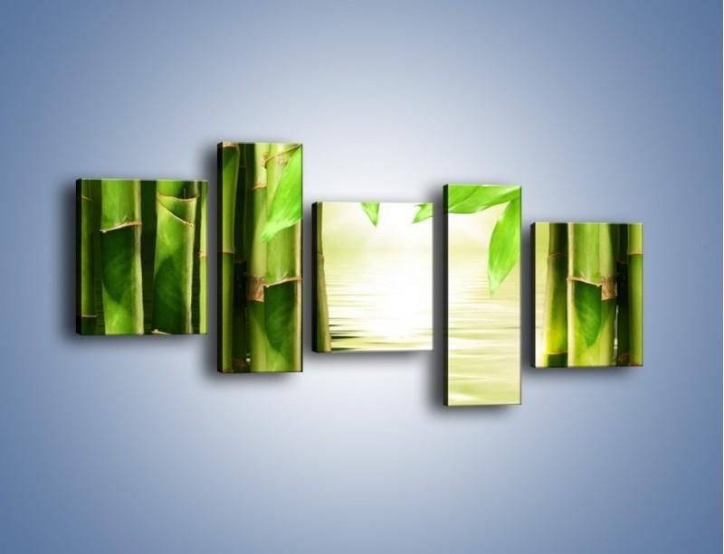 Obraz na płótnie – Bambusowe liście i łodygi – pięcioczęściowy KN027W7
