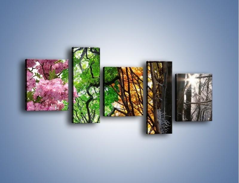 Obraz na płótnie – Drzewa w różnych kolorach – pięcioczęściowy KN037W7