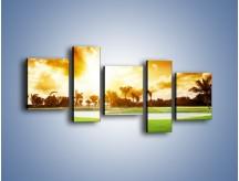 Obraz na płótnie – Zielony dywan i drzewa – pięcioczęściowy KN1004W7
