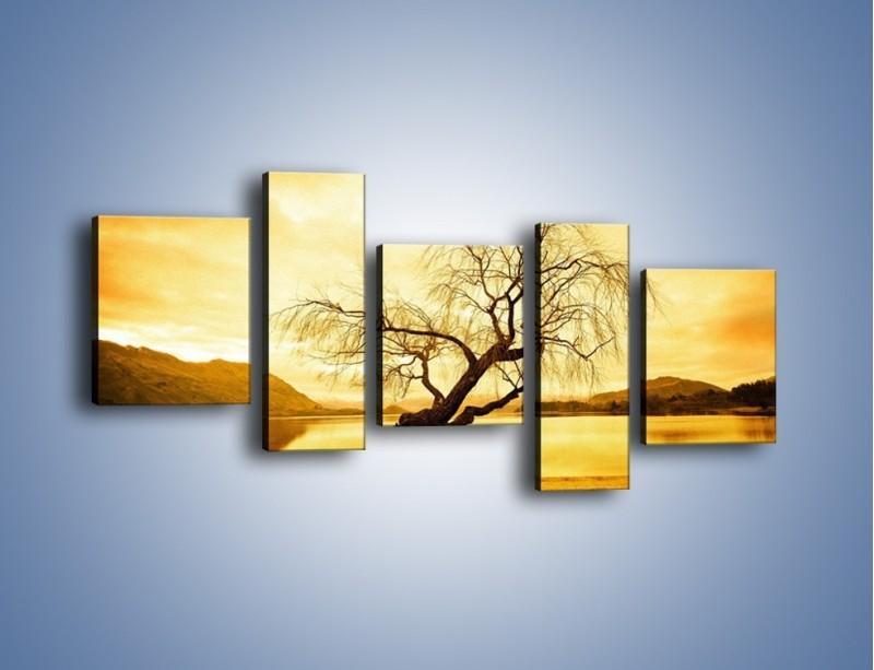Obraz na płótnie – Pochylone drzewo w sepii – pięcioczęściowy KN1033W7