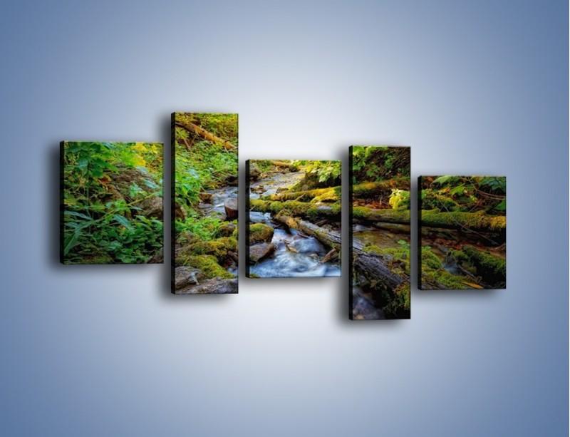 Obraz na płótnie – Drewno ścięte do wody – pięcioczęściowy KN1059W7