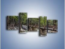 Obraz na płótnie – Bezpieczne przejście na druga stronę – pięcioczęściowy KN1060W7