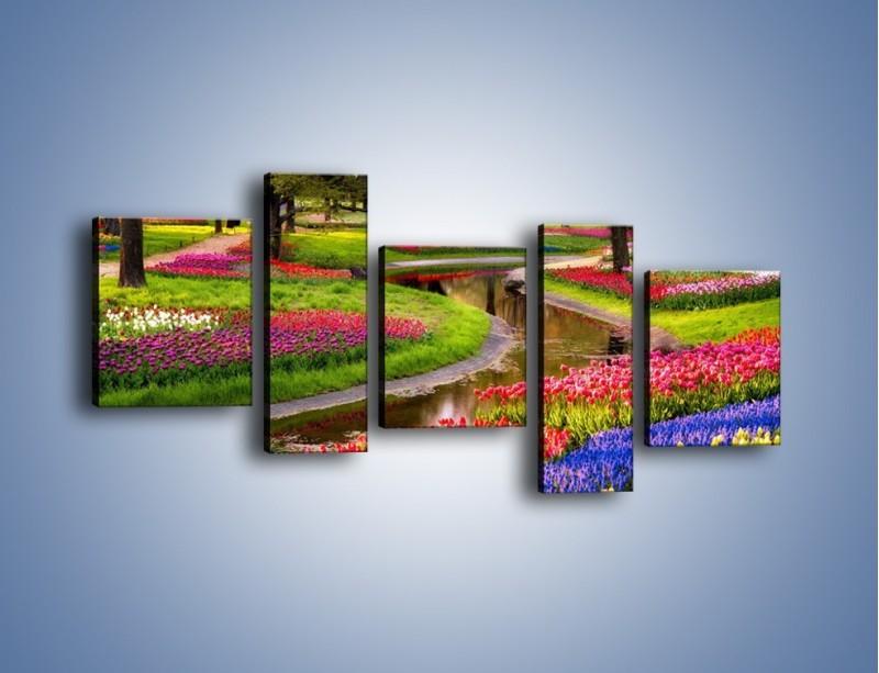 Obraz na płótnie – Aleje kolorowych tulipanów – pięcioczęściowy KN1079W7