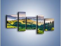 Obraz na płótnie – Tylko zieleń i góry – pięcioczęściowy KN1084W7
