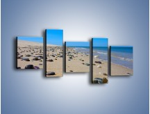Obraz na płótnie – Całe morze kamyczków – pięcioczęściowy KN1086AW7
