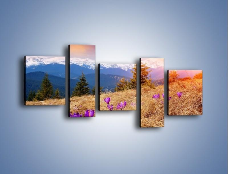 Obraz na płótnie – Przebiśniegi w górach – pięcioczęściowy KN1126AW7
