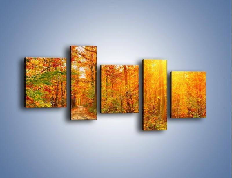 Obraz na płótnie – Leśną drużką jesienią – pięcioczęściowy KN1163AW7