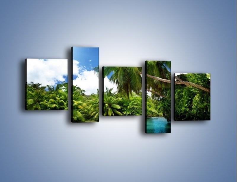 Obraz na płótnie – Rozłożone palmy i woda – pięcioczęściowy KN1168AW7