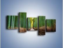 Obraz na płótnie – Bambusowy las – pięcioczęściowy KN1187AW7