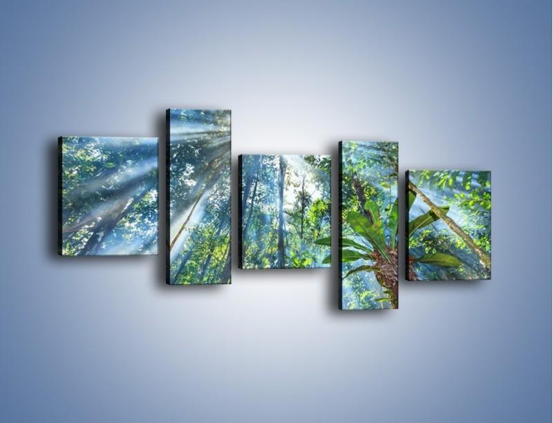 Obraz na płótnie – Dyzio marzyciel i drzewa – pięcioczęściowy KN1189AW7