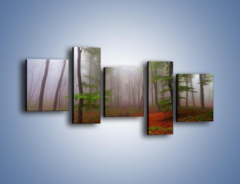 Obraz na płótnie – Budzący się lasek – pięcioczęściowy KN1285AW7