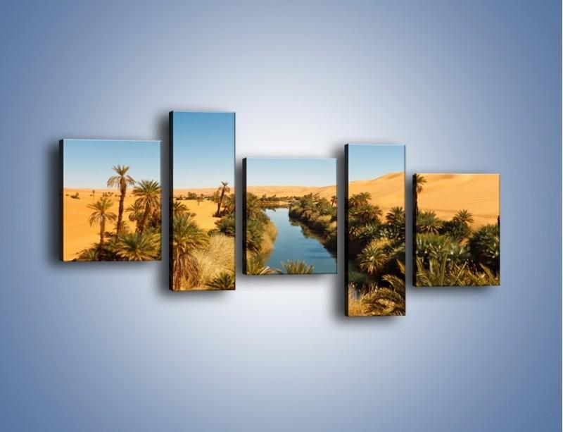 Obraz na płótnie – Woda woda na pustyni – pięcioczęściowy KN1294AW7