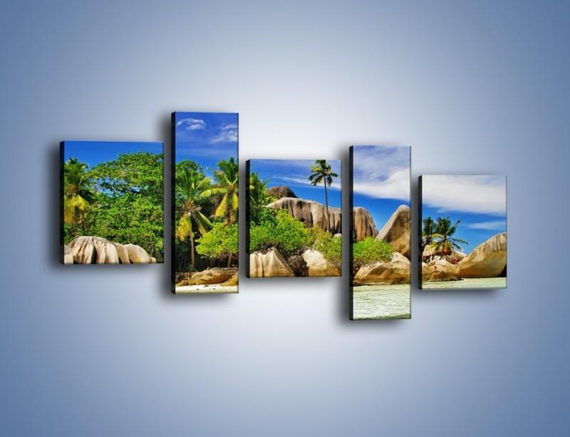 Obraz na płótnie – Tropiki i ich wysokości – pięcioczęściowy KN1306AW7