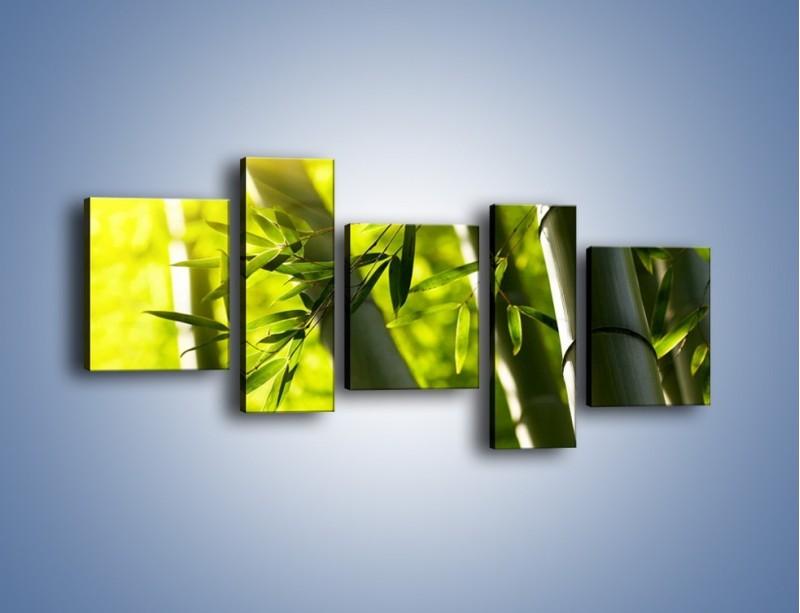 Obraz na płótnie – Twarde łodygi bambusa – pięcioczęściowy KN1314AW7