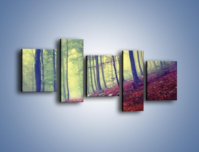 Obraz na płótnie – Bardzo wąską ścieżką leśną – pięcioczęściowy KN1335AW7