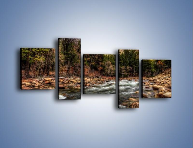 Obraz na płótnie – Chłodny dzień nad rwącym potokiem – pięcioczęściowy KN1342AW7