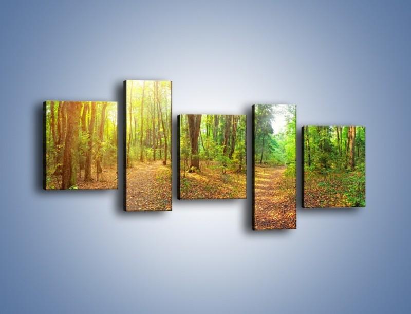 Obraz na płótnie – Przejrzysty piękny las – pięcioczęściowy KN1344AW7