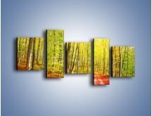 Obraz na płótnie – Brzózki liście i las – pięcioczęściowy KN1345AW7