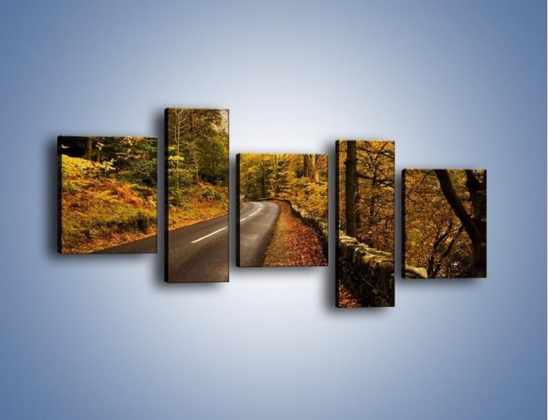 Obraz na płótnie – Asfaltową droga przez las – pięcioczęściowy KN169W7