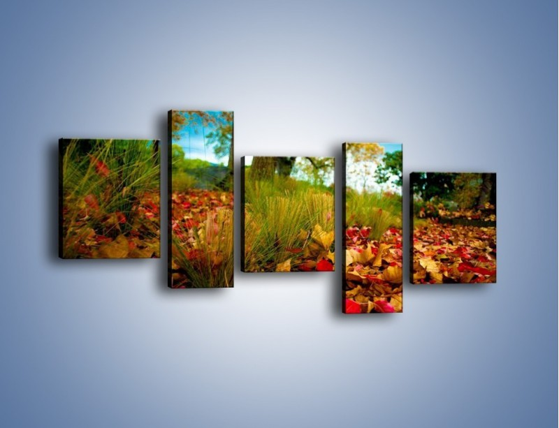 Obraz na płótnie – Droga usłana liśćmi – pięcioczęściowy KN172W7